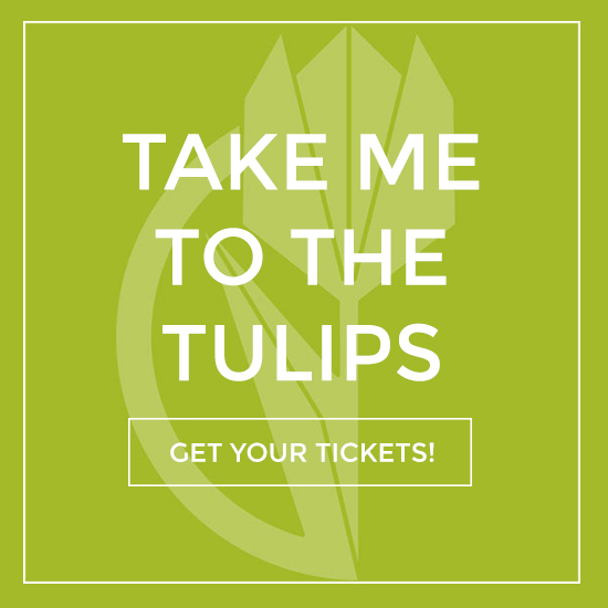 Take Me To the Tulips | Get Tickets to Fraser Valley Tulip Festival
