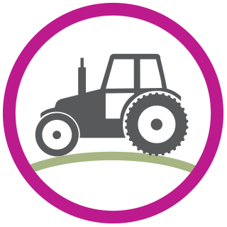 Tulips Tractor Icon | Tulips of the Valley Chilliwack